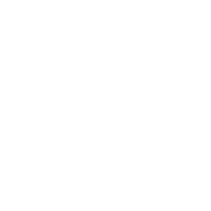 Icon - Transparent - Review Your Politician